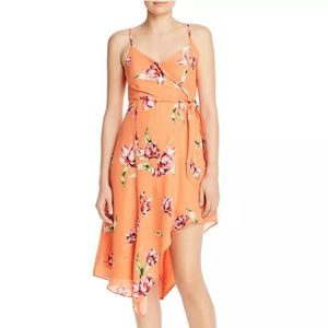 PARKER Monroe Floral Dress NWT